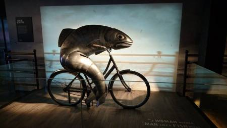fishridingbike